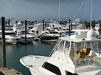 Yates en el causeway de amador en Panamá